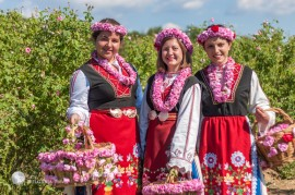 Rose Festival 2018 - 5 days - June 1 - 5, 2018